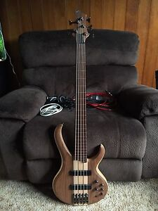Ibanez BTB fretless bass 5 string Immaculate condition Coffs Harbour Coffs Harbour City Preview
