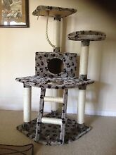 5 Levels120cm Cat Tree Condo Scratching Post Play Center Bayswater Knox Area Preview