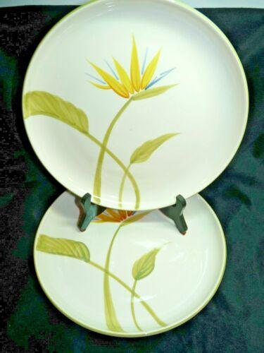 Winfield China California BIRD OF PARADISE Pair of Dinner Plate