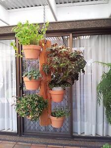 Vertical Garden Hanger - New Strathfield Strathfield Area Preview