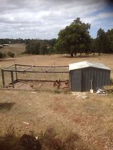 Shed / Chicken Coop Roleystone Armadale Area Preview