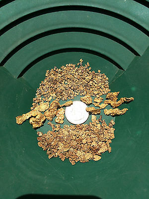 5 lb Gold Paydirt Unsearched and Guaranteed Added Gold! Panning