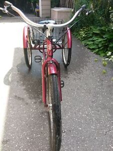 ADULT SCHWINN (TIKE BIKE) 3 wheels $275.00