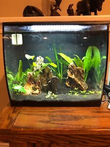 fluval flex 9 and other 20 gallon tank for 120