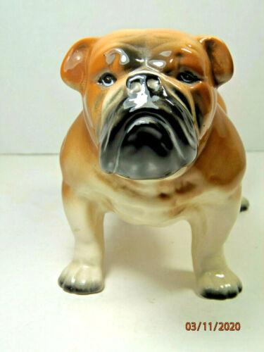 Vintage  adorable  BULLDOG  porcelain figurine , Made in England