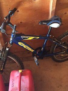 Child's bike and girls/ladies bike