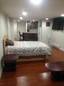 Large Basement Bedroom - perfect for student or mature adult