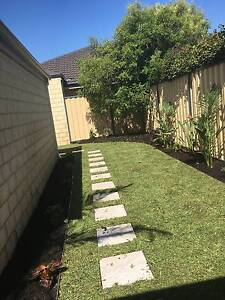 Artificial Lawn, turf, reticutaion installation and repairs Perth Wanneroo Wanneroo Area Preview