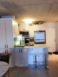 Downtown condo 3 and half for rent