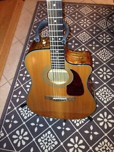 Guitare acoustique Fender CD220 sce Ash Burl avec Preamp Fishman