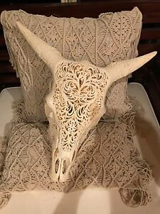 Carved cow skull Bonogin Gold Coast South Preview
