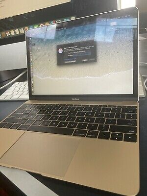 "Apple MacBook Air Retina Display 12"" [Rose Gold Edition]"