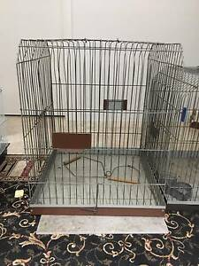 Large Parrot Cage Coorparoo Brisbane South East Preview