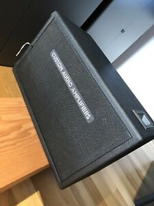 Custom Audio Amplifiers 2x12 (rare)