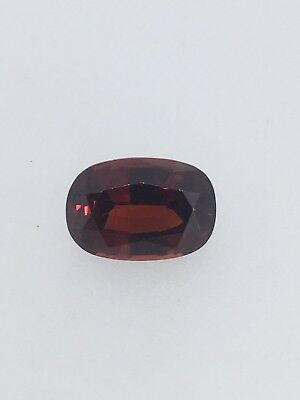 3.70ct Natural Pyrope Garnet! Loose Gemstone Collection #11002
