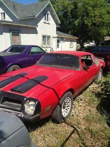 Cool muscle car for restoration