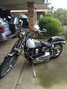 1989 Soft Tail Springer Harley-Davidson Capel Capel Area Preview