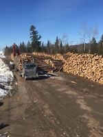 Logging operators and truck drivers needed in Fort Frances area