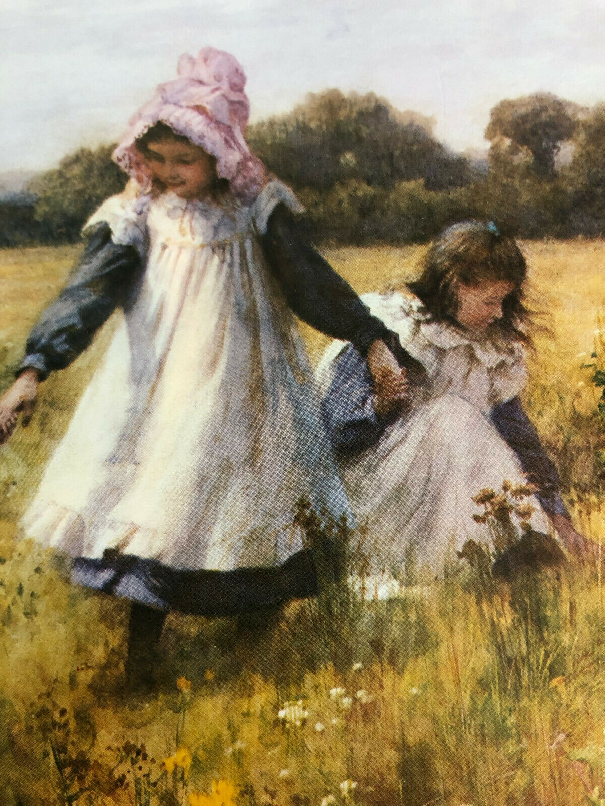 Picking Wild Flowers By William Affleck C.1905, 11 X 8.5 Print 100 Mint  - $23.00