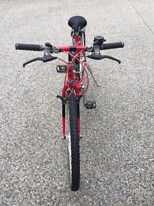 Men's vintage bike