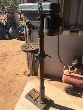 Pedestal drill Bejoording Toodyay Area Preview
