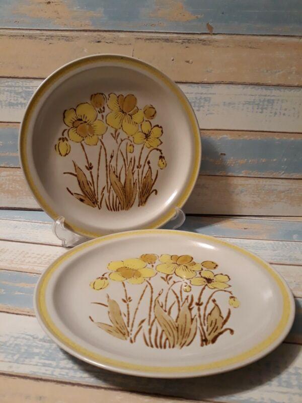 "2 International China Islanderstone Dinner Plates Maui stoneware Japan 10.5"""
