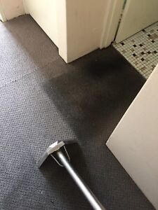 2 bedroom unit/house carpet cleaning for $90 available 7 days a week