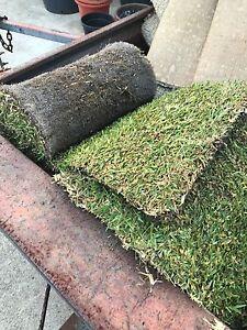 Roll on lawn Orelia Kwinana Area Preview