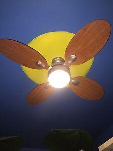 Fan de plafond 4 palmes