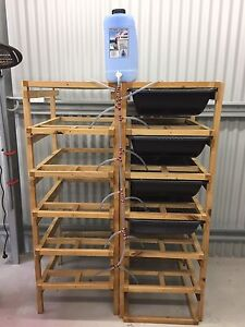 RAT RACKS 2 x 6 TIERS FOR SALE FREE WATER DRIPPER SYSTEM AND TUBS Kingsgrove Canterbury Area Preview