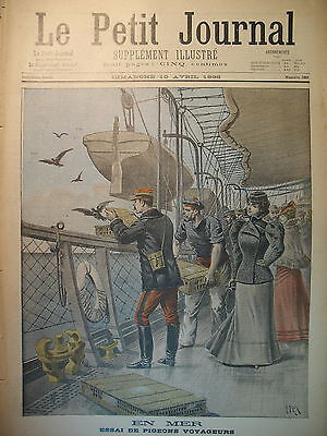 Pigeon Racing Pigeon Traveller Sea Transatlantique the Petit Journal 1898