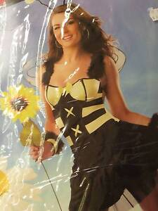Honey Bee / Stinger Bee Costume Outfit, super cute Deception Bay Caboolture Area Preview