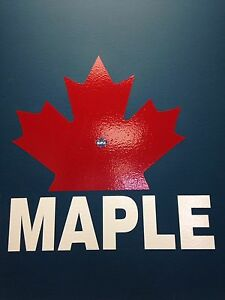 Maple electronics repair with passion cheap from the city