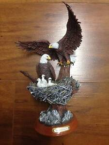American Bald Eagle Sculpture - Treetop Majesty Ormeau Gold Coast North Preview