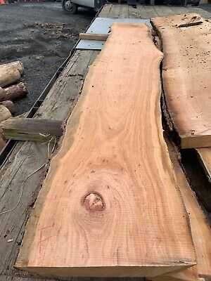 Live Edge Cherry Wood Slab Bartop Counter Table Cherry Wood Counter