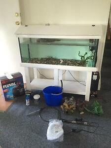 Juvenile turtle & 5ft tank set up Brassall Ipswich City Preview