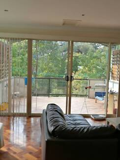 One bedroom in a Taringa house for rent