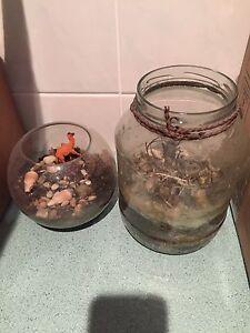 Terrarium jars - DIY fun Collingwood Yarra Area Preview