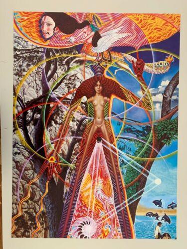 SANTANA,ABRAXAS,MEGA RARE 1970's POSTER