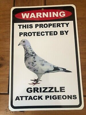 Outdoor Grizzle Pigeon Sign