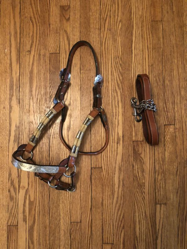 Dale Chavez Rawhide Show Halter and Lead Horse Size