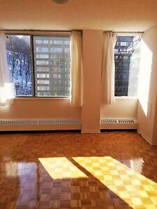 Très grand logement 4 1/2 à CDN / large 2 bedroom apartment