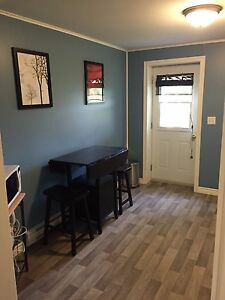 Fully furnished bachelor apt, steps from CNA