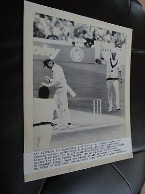Original Press Photograph 1989 England v Australia David Gower Carl Rackemann