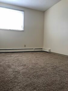 Move In Ready! Large 2 Bedroom Apartment!