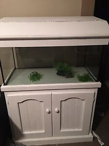 Fish tank and accessories for sale Telarah Maitland Area Preview