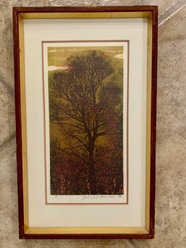 Joichi Hoshi 1974 Evening  Woodblock Print Signed Framed in Excellent Shape