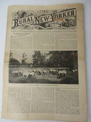 Vintage 1919 Rural New Yorker Journal Newspaper Maxwell Car John Deere #9613