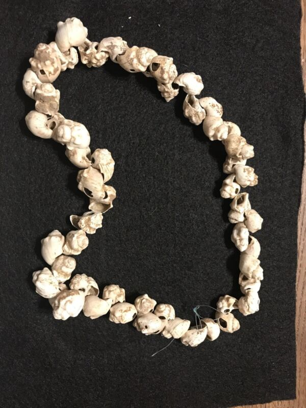20 Inch Shell Beads Necklace California Indian Artifacts Arrowhead A-5