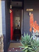 Erskineville: Short term *Pet-friendly* garden terrace w/ parking Erskineville Inner Sydney Preview